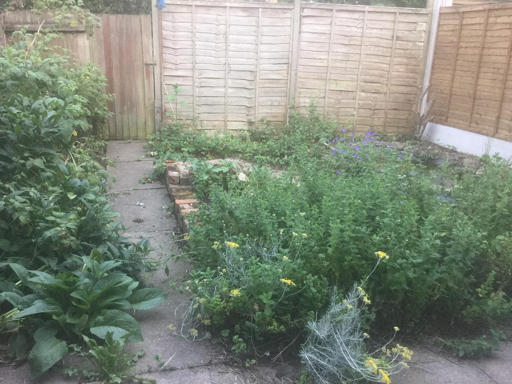 Coop Garden 6
