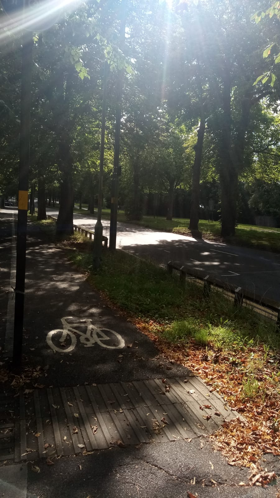 Northfield Cycle lane by Orthopaedic hospital